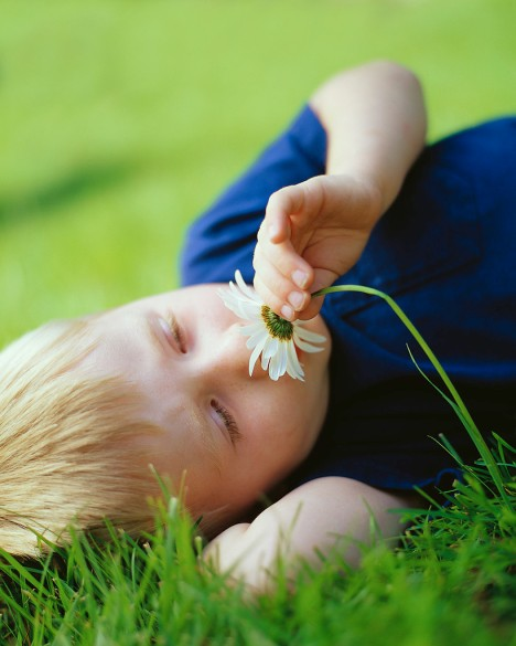 Boy Smelling Daisy