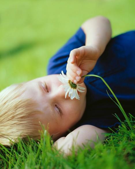 Boy Smelling Daisy